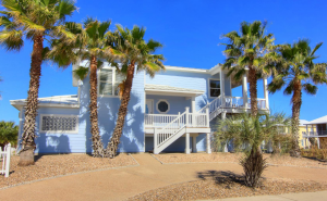 palm trees, driveway, and blue beach house